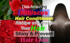 this-amazing-hibiscus-hair-conditioner-recipe-will-make-your-hair-shiny-prevent-hair-loss2