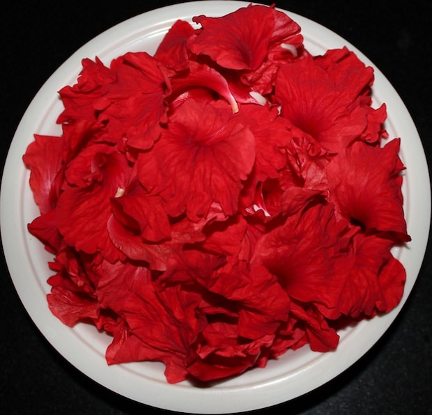Hibiscus Hair Conditioner 2