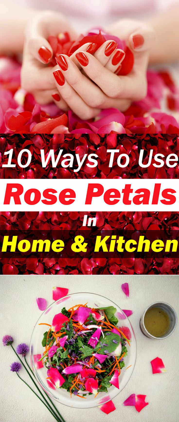 Fragrant, colorful, and beautiful we don't need to describe what roses are. This flower is edible and has many culinary and medicinal uses. Learn about the 10 ways to use rose petals in this article!