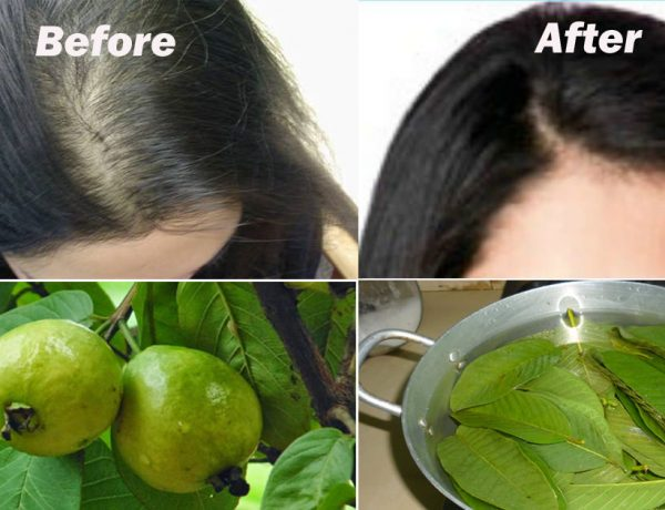 this-one-natural-ingredient-will-stop-your-hair-loss-and-make-it-grow-like-crazy-1