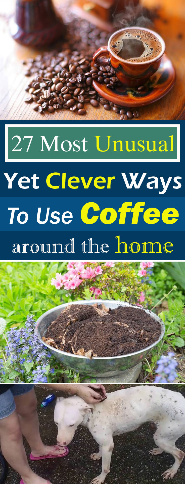 Your love for coffee will grow leaps and bounds after seeing these unusual COFFEE uses, and learning them can make your life easier than before!