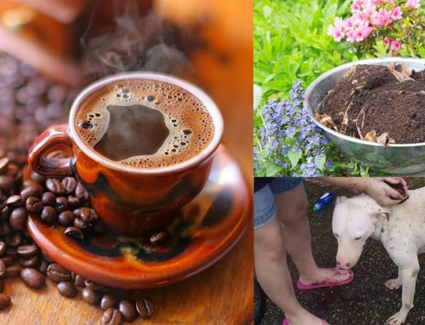 15 Most unusual yet clever ways to use coffee around the home3