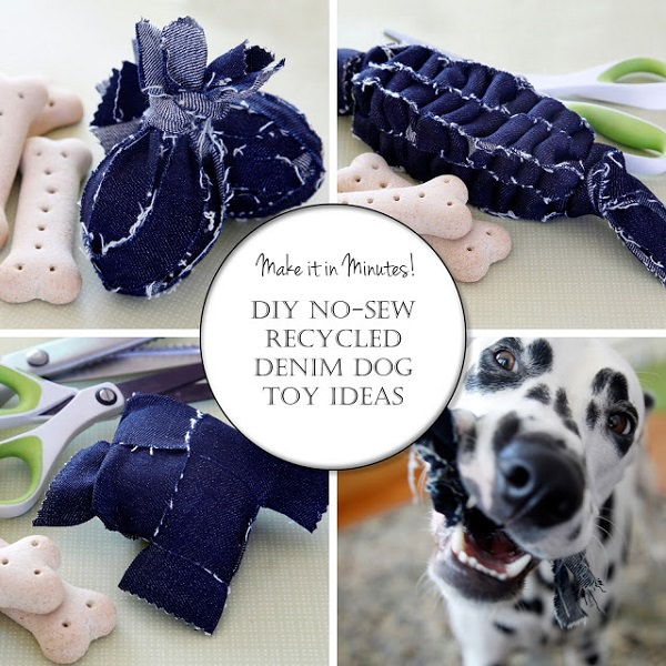Dog Toys You Can DIY From Things Around the House 3