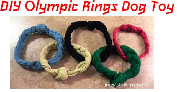 Dog Toys You Can DIY From Things Around the House 30