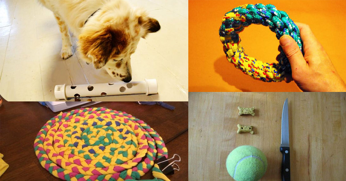 28 Homemade DIY Dog Toys to Keep Them Busy ⋆ Bright Stuffs