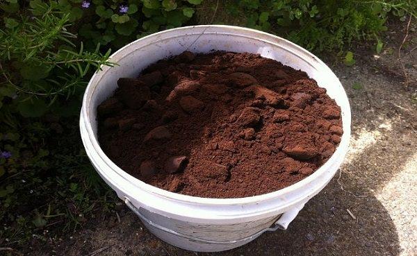 coffee ground in kitchen garden