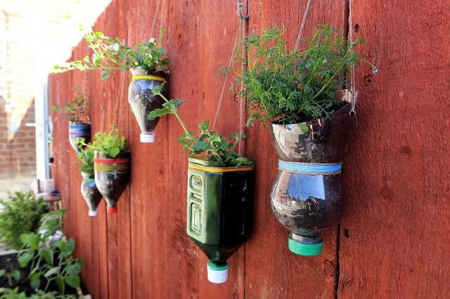 hanging planter from plastic bottle