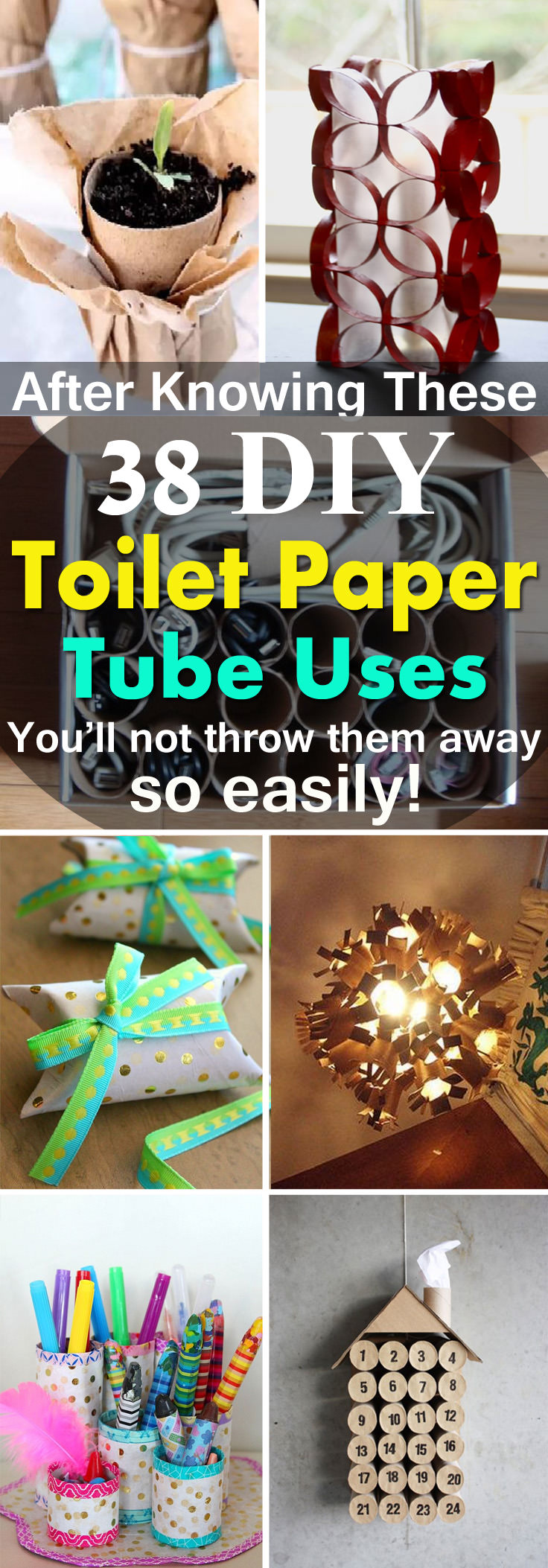 After learning these 38 DIY Toilet Paper Tube Crafts you'll not throw them away into the trash so easily!