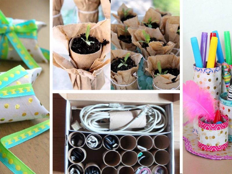 38 Most Amazing DIY Toilet Paper Roll Uses In Home3