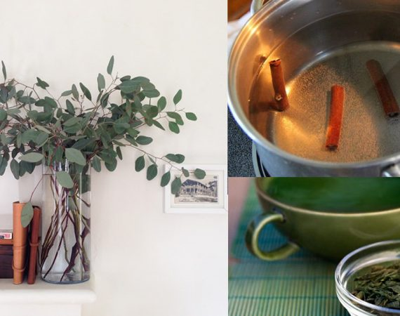 Apply These 20 DIY Ideas to Remove Nasty Odor From Home Naturally3