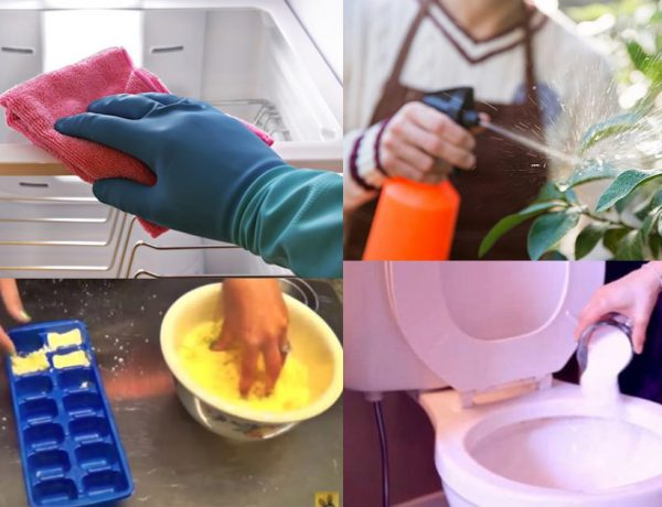 If You Use Borax In Your Home These 33 Miracles Will Happen3