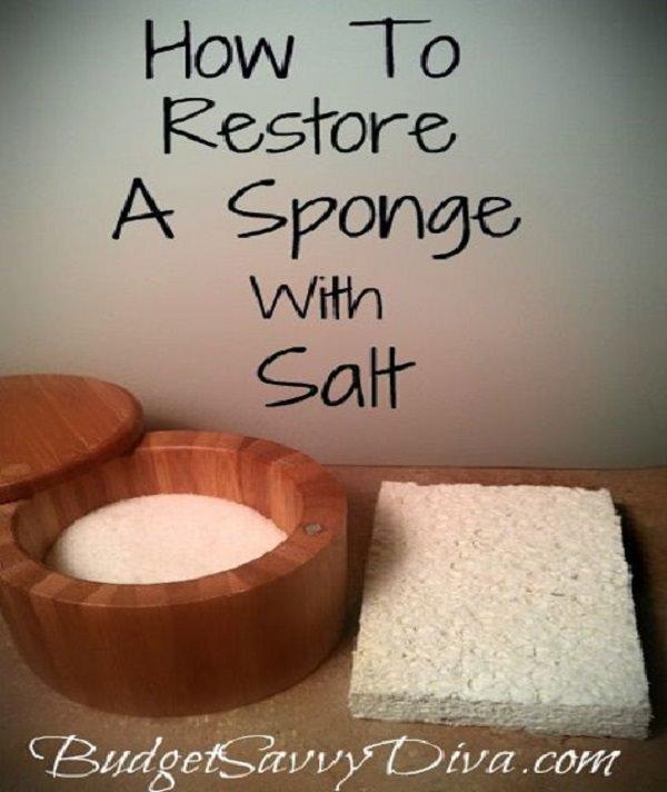 11. Restoring a sponge 2