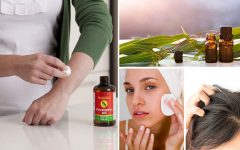 27 Unbelievable Eucalyptus Oil Uses You Can't Miss 1