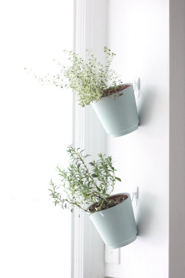 29. Indoor Herb Garden