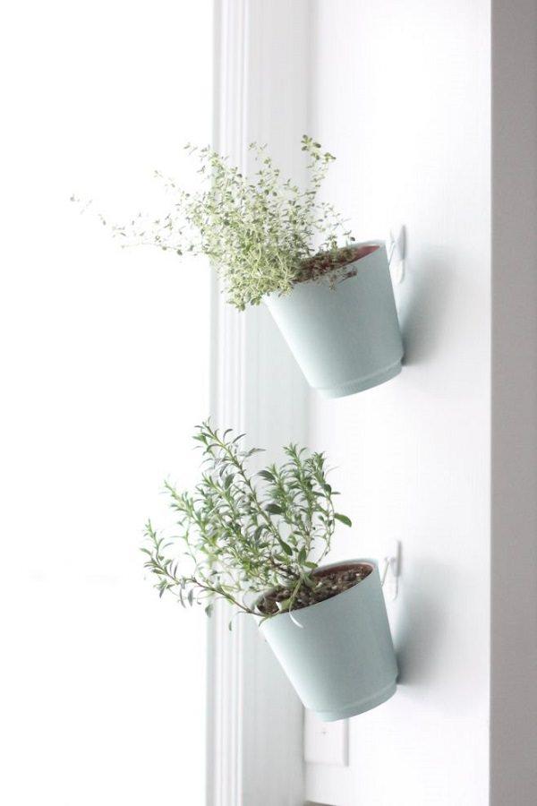 29. Indoor Herb Garden