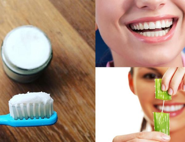 grow back receding gums easily with these 4 natural remedies4