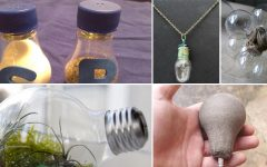 DIY Old Light Bulbs Uses in the Home3