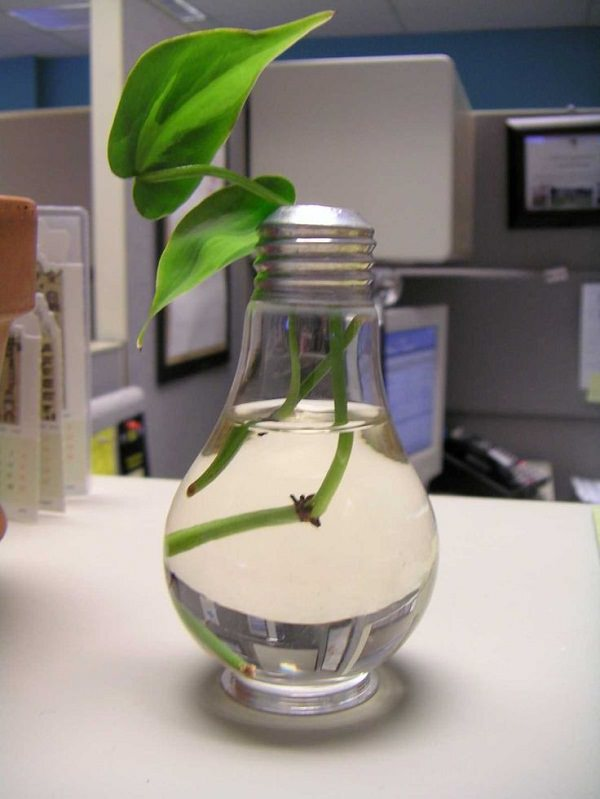 Light Bulb Planters
