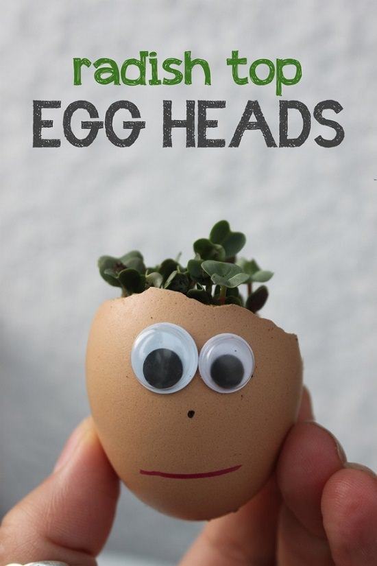 Eggshell Craft Ideas