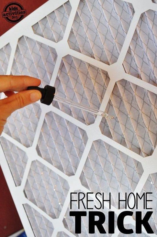 essentialoil air freshener2