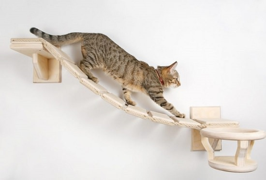 18 DIY Cat Shelves Ideas For Ultimate Cat Lovers