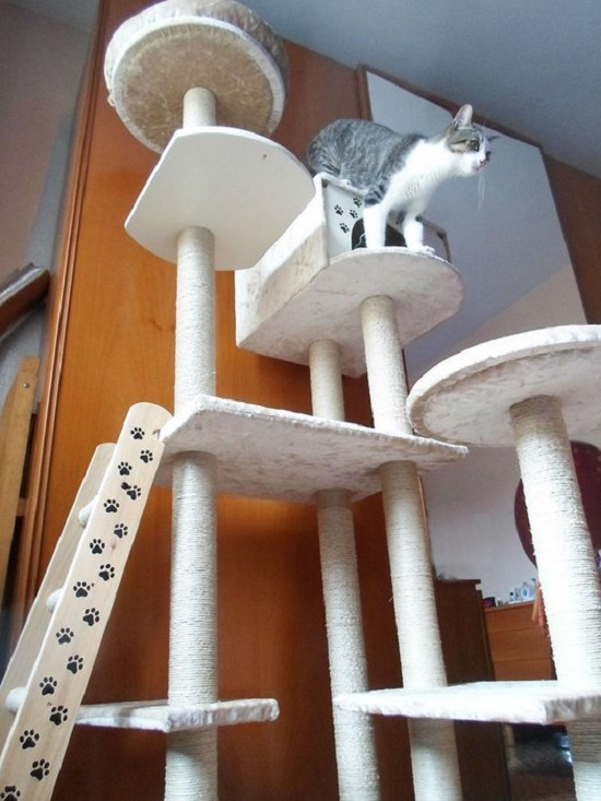 diy cat house ideas9