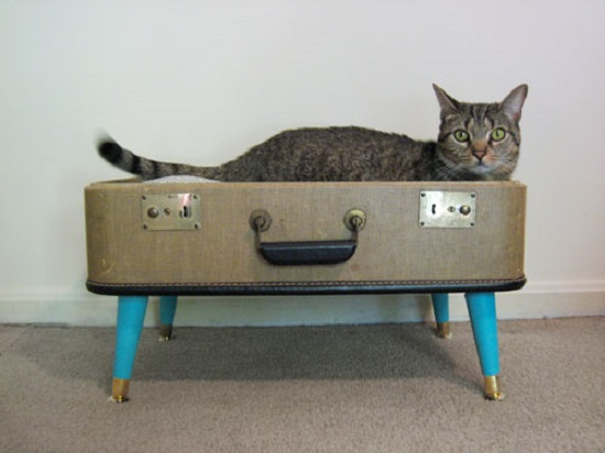 diy cat house ideas11