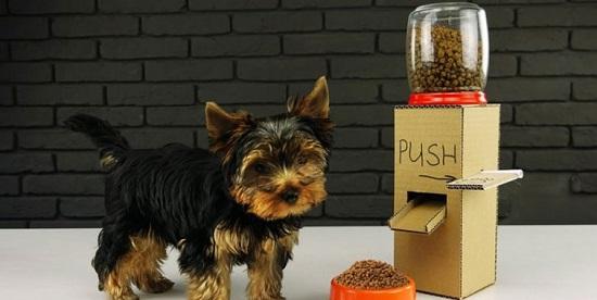 Dog Feeding Station Ideas 21