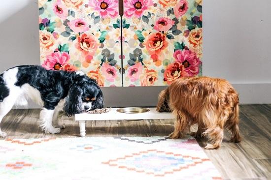 Dog Feeding Station Ideas 22