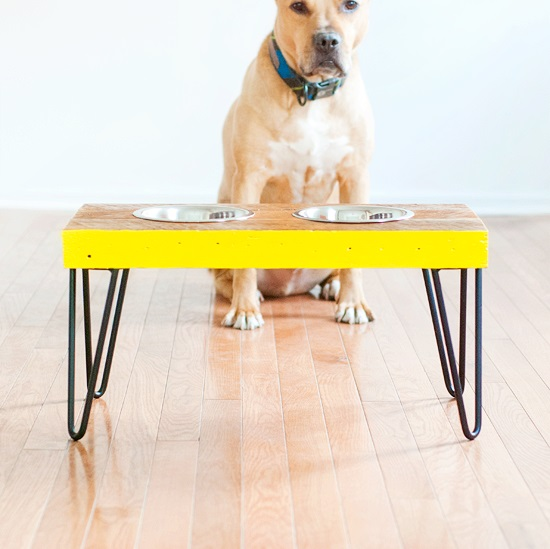 DIY Dog Feeding Station 8