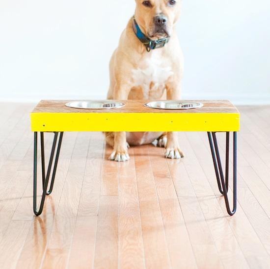 Dog Feeding Station Ideas 8