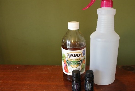 Homemade Flea Spray for Dogs