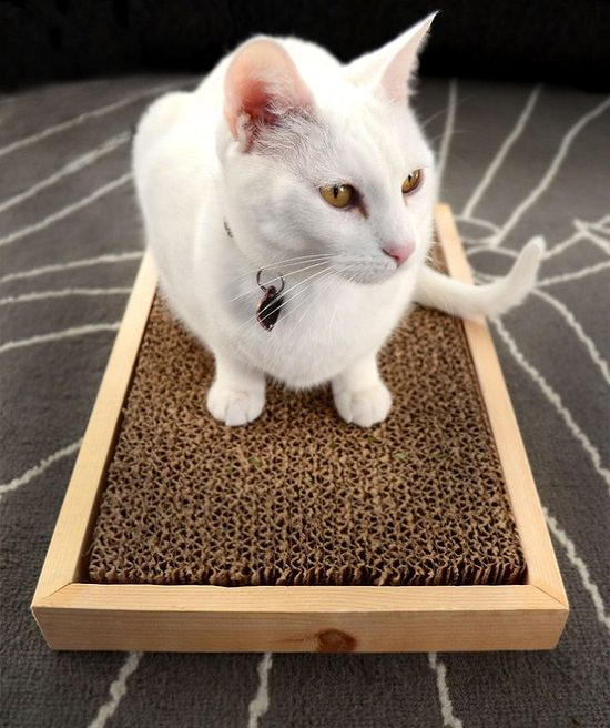 DIY Cardboard In A Box Cat Scratcher