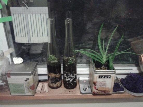 DIY Message in a Bottle 15