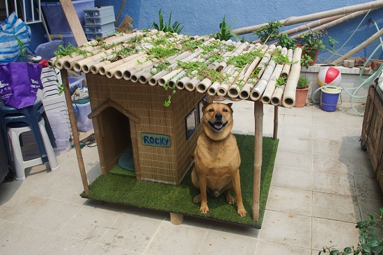 DIY Dog House Ideas