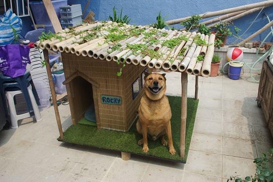 DIY Dog House Ideas