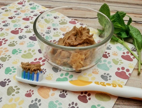 cinnamon dog toothpaste recipe