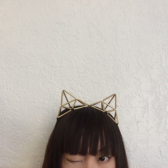 Geodesic Cat Ears
