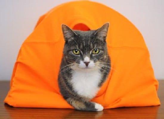 DIY Cat Tent14