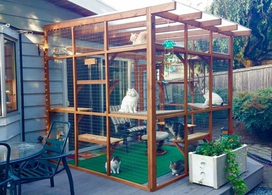 25 DIY Cat Enclosure Ideas and Ideas