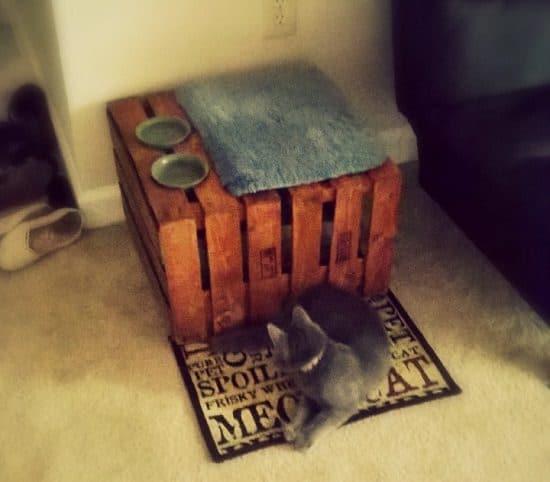 42 Diy Cat Litter Box Best Diy Cat Litter Box Bright Stuffs