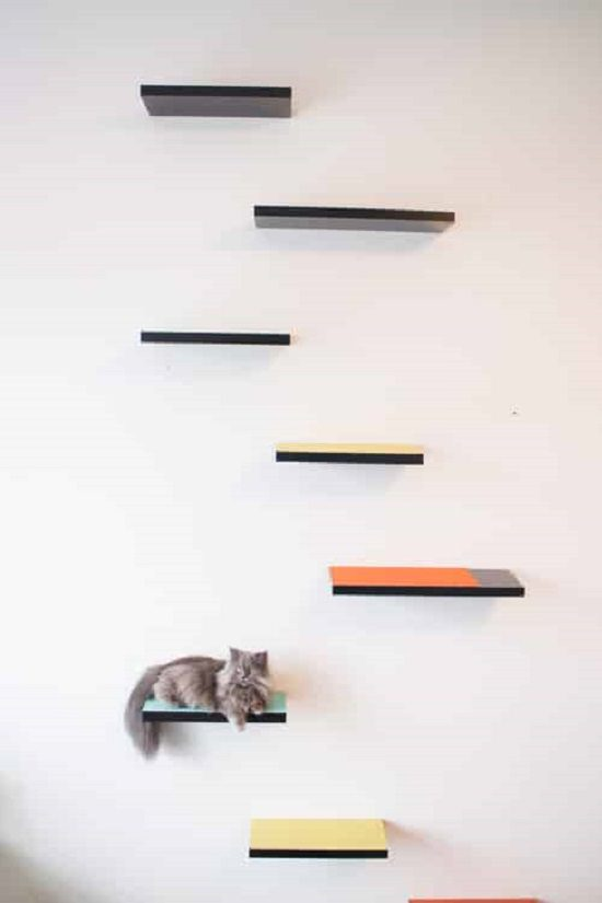 Climbing Cat Shelves