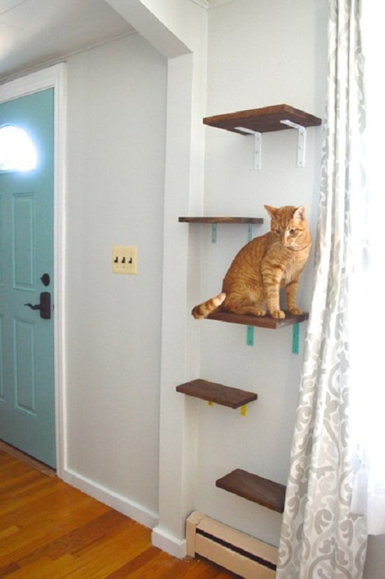 Wood Board Cat Floating Shelves