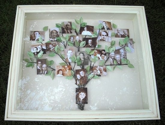 Photo Tree In Shadow Box