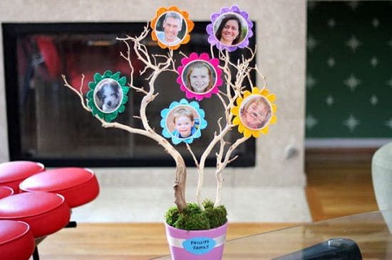 Custom 3D tree for photos