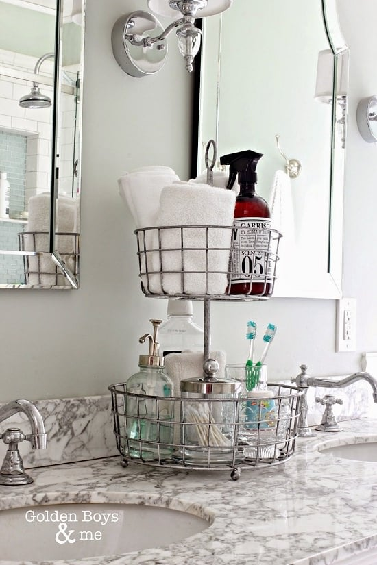 Two-Tiered Stand Shower Organizer