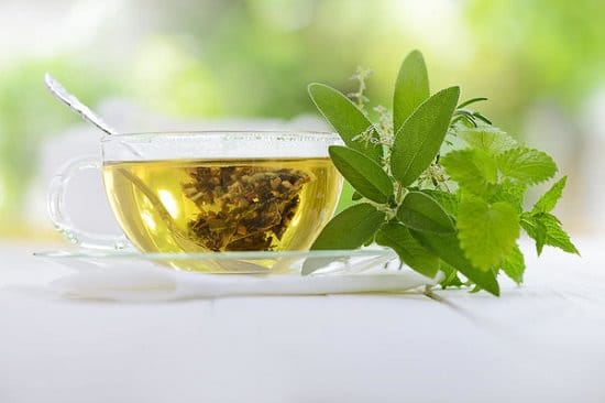 Health Benefits of Drinking Green Tea Before Bed 2