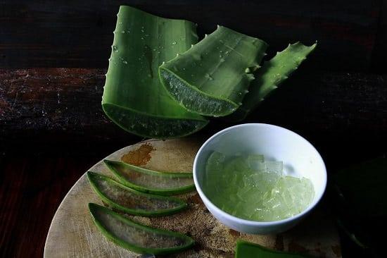 Aloe vera helps in rosacea