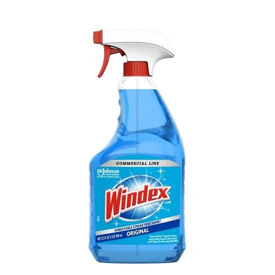 Windex To Clean Bugs