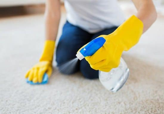 How To Get Rid Of Carpet Odor From Water Damage ⋆ Bright